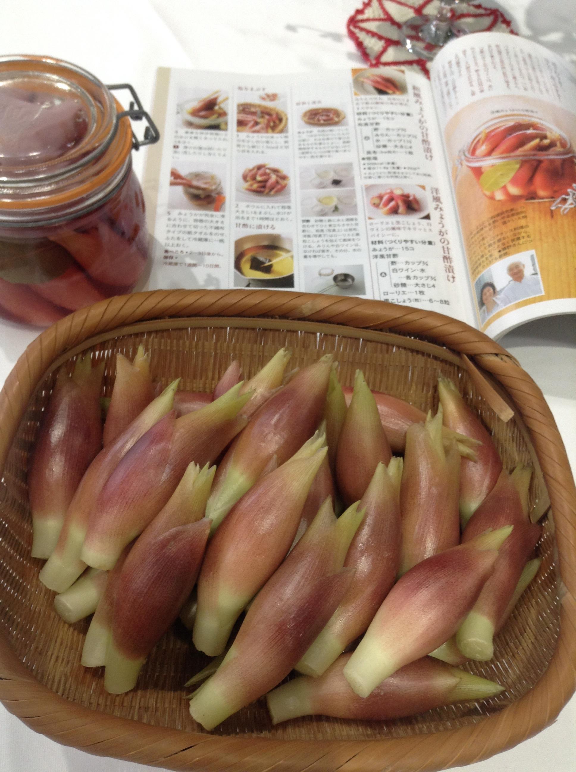ミョウガの甘酢漬けを作ろう!
