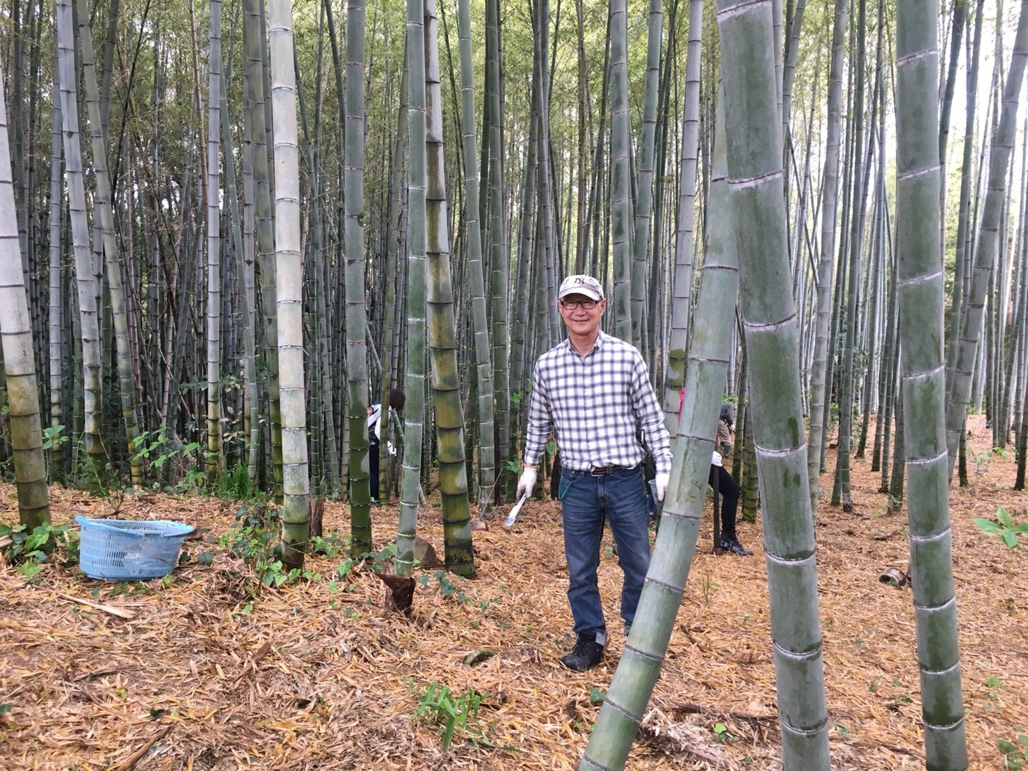 恒例の長島農園筍掘り