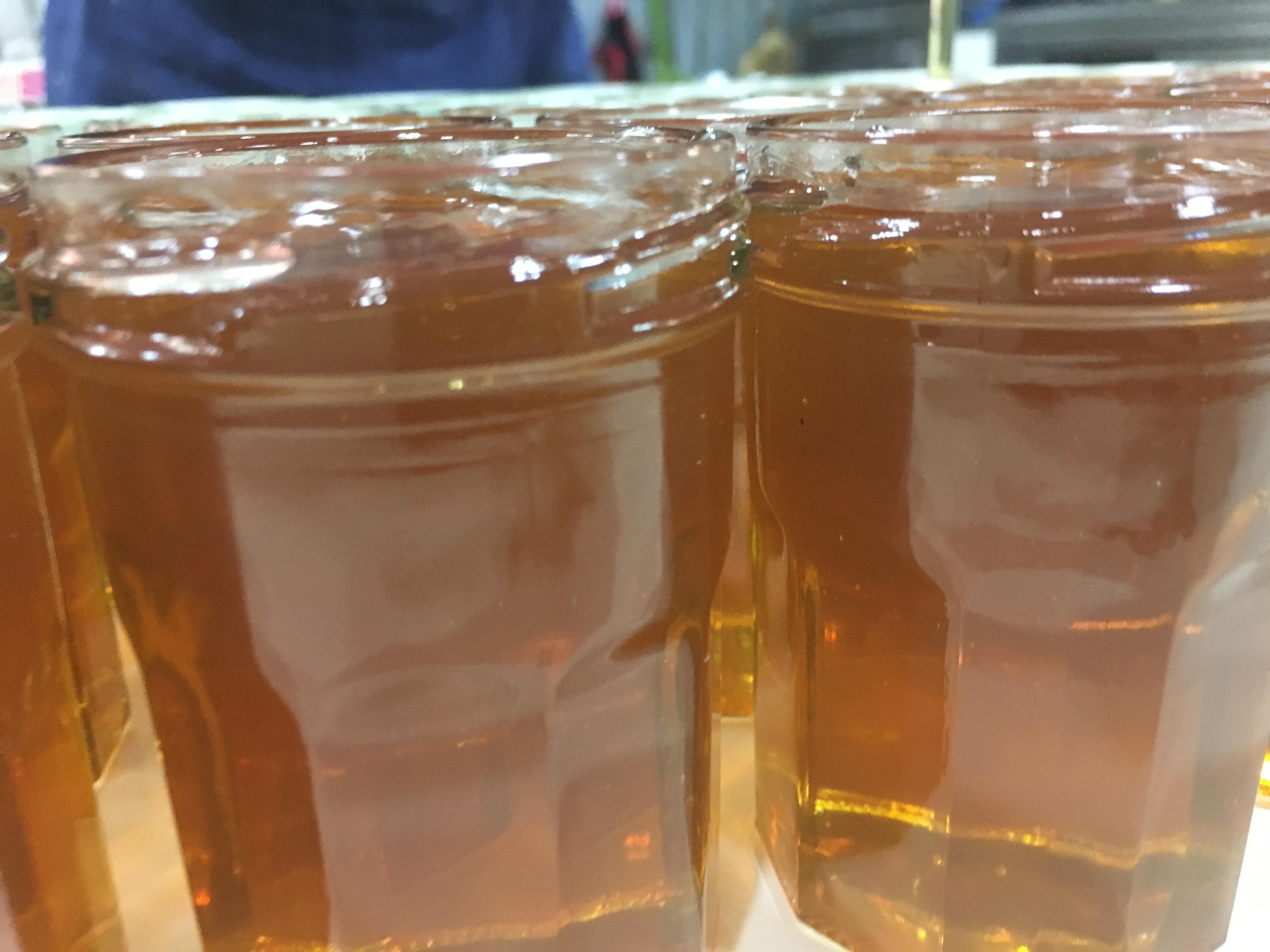 長島フランチェスカさんのハチミツ
