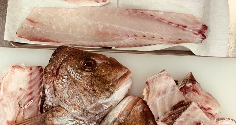 食材マスターになれる!実践タイプのクラス:鯛!